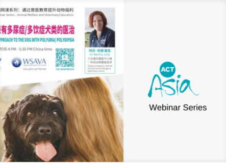 Basic conditions and specific steps for opening a veterinary drug store